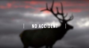 title shot from No Accident a film about cwd