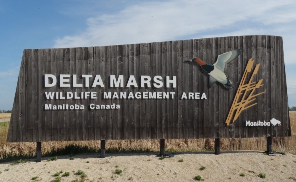 full picture of the sign at delta marsh