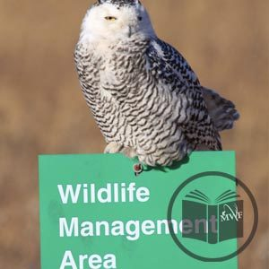 an owl sitting atop a wildlife management area sign