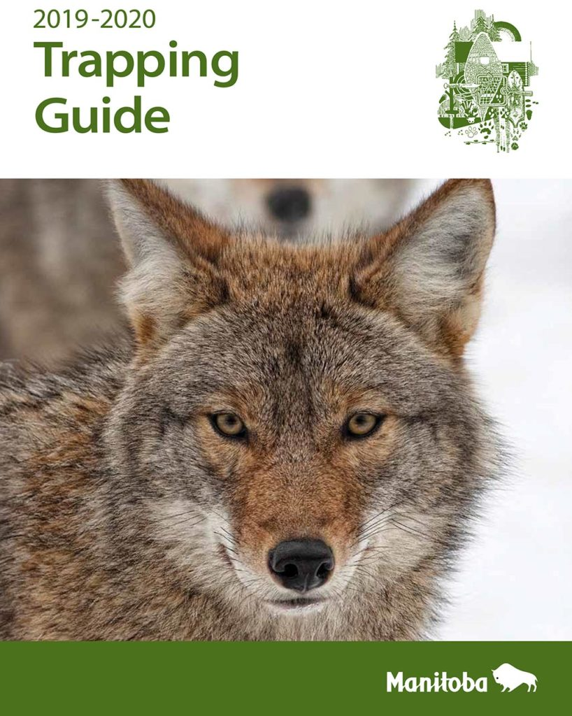 manitoba trapping guide cover