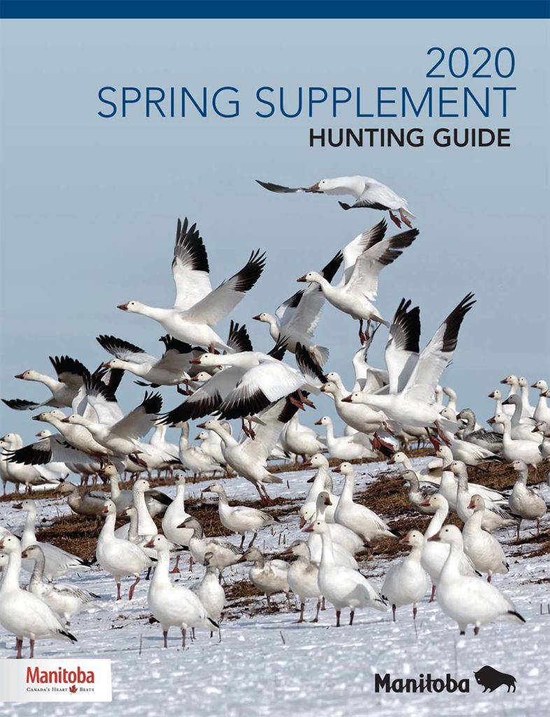 2020 Spring Supplement Hunting Guide