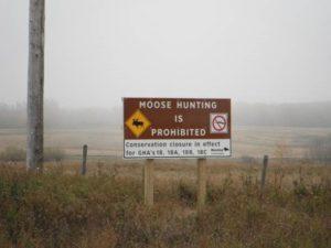 Moose Closure Sign