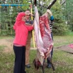 Field Dressing and Butchering